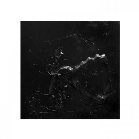 Opere Aldo Palma: Gargouille #1